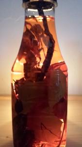 bouteille automne